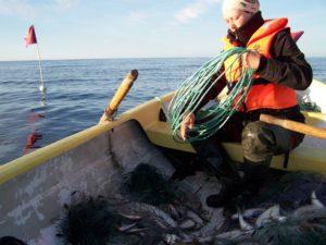 Ruhnu fishing